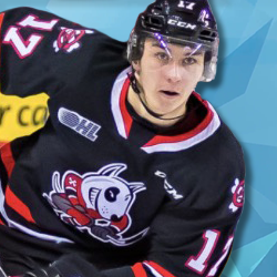 Cam Peters, Niagara Ice Dogs. Edge Sports Management